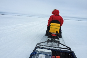 Riding on sea ice