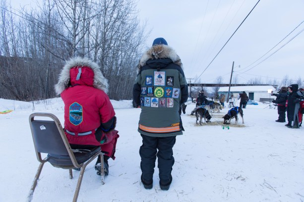 Iditarod veterans
